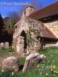 ST BONIFACE OLD CHURCH in SPRING. Bonchurch, Isle  of Wight, England, UK, Britain